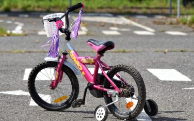 What Happens When The Training Wheels Come Off?